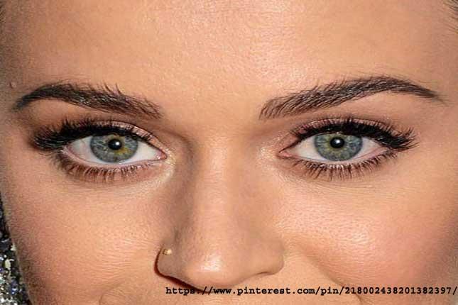 Rounded-Eyes