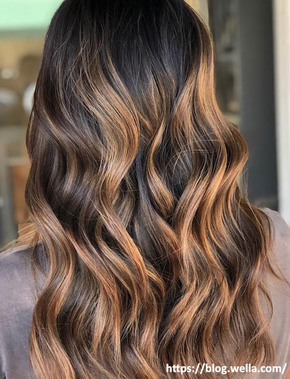 Black Hair With Copper Highlights
